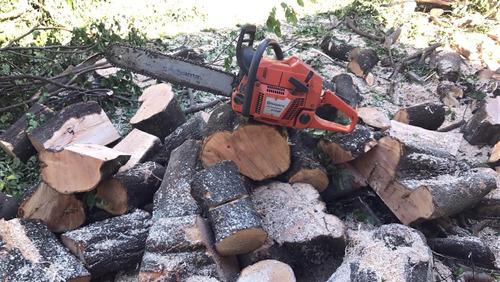 corte, poda e manutenção de árvores; serrador e arborista