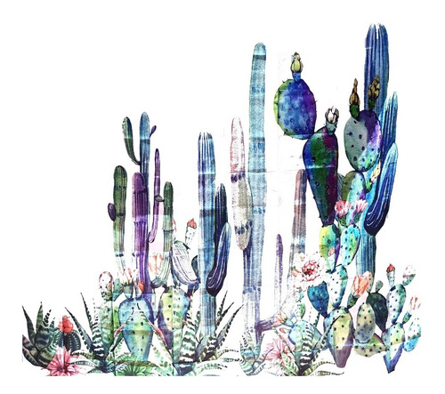 cortina de ducha baño cactus desierto cactacea wanderlust