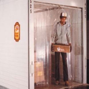 cortina sanitária em tiras de pvc polar p/ áreas refrigerada