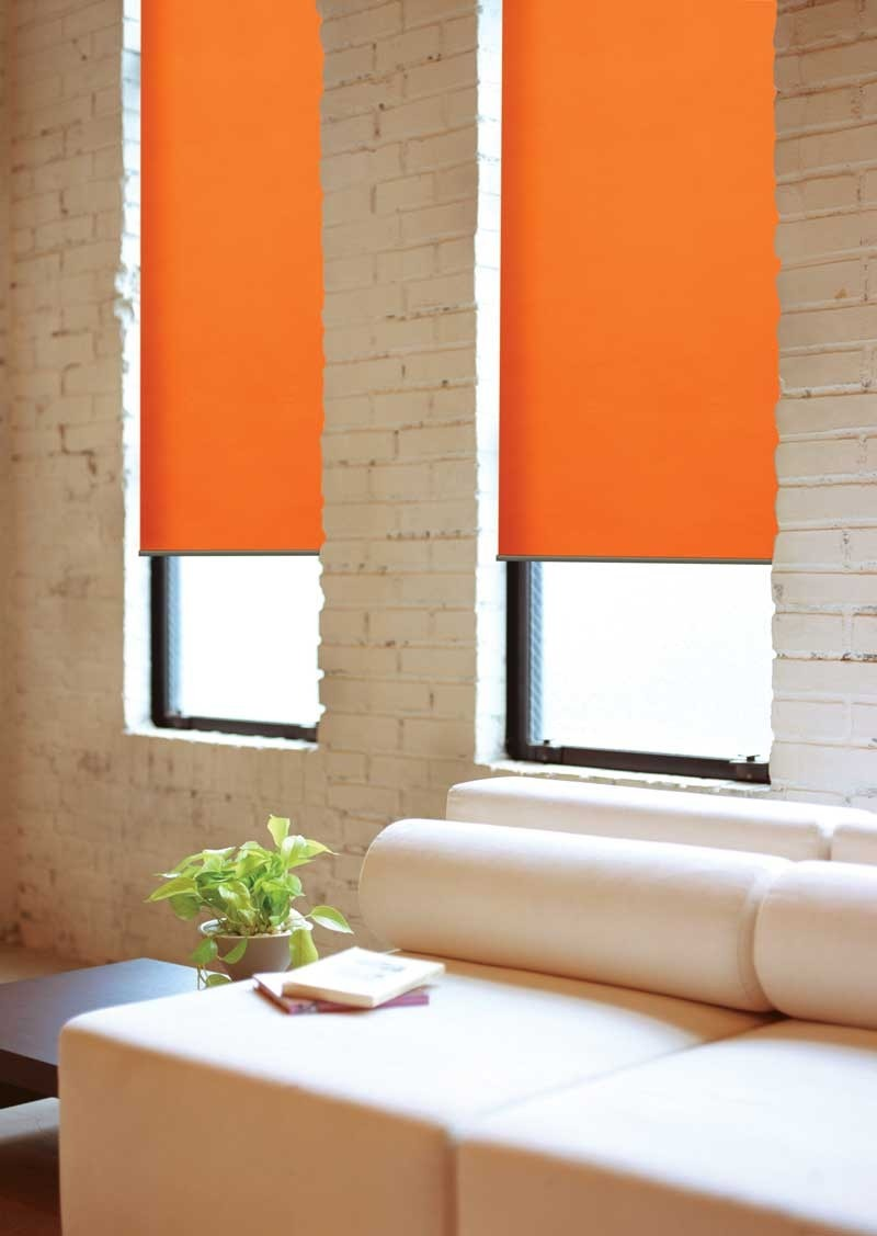 cortinas roller south beach colores