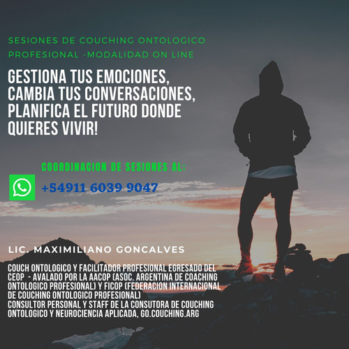 couching ontologico profesional - sesiones on line