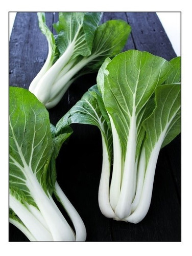 couve chinesa -pack choy branco - 500 sementes -