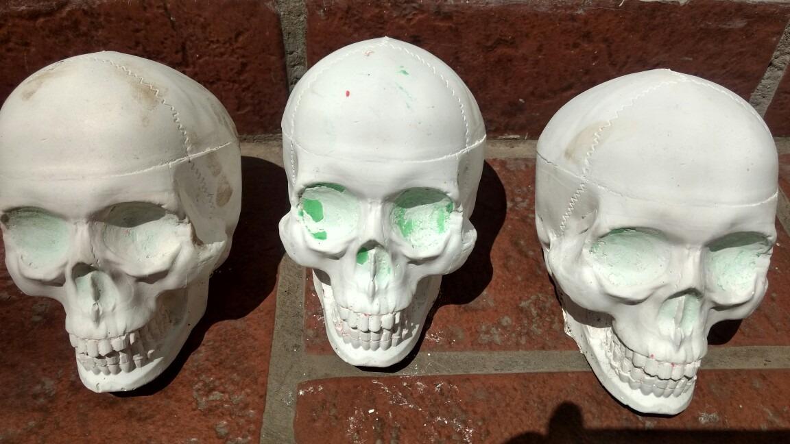 Craneo Calaca Skull Yeso Odontologico Extra Duro Gran Detall - $ 85 ...