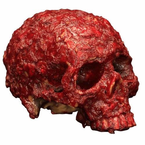 cráneo decorativo costra de sangre halloween