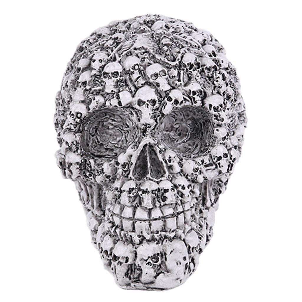 Magnífico Cráneo Humano Marcado Imágenes - Imágenes de Anatomía ...
