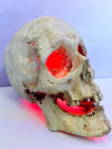craneo humano resina con luz tamaño real pecera reptiles