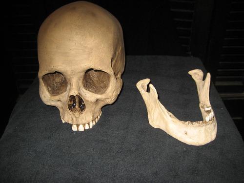 cráneo réplica calavera humana, teatro, corto, san la muerte