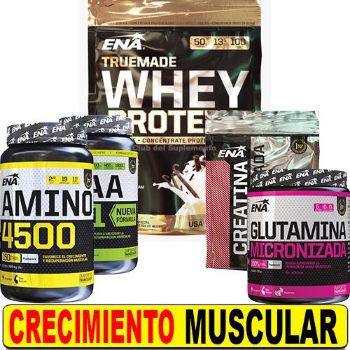 crecimiento ena aminoacidos bcaa glutamina proteina creatina