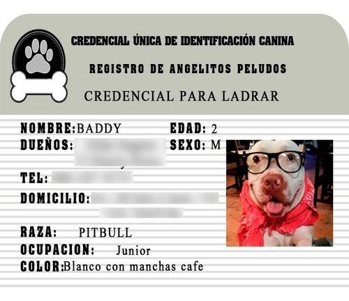 credencial para mascotas.