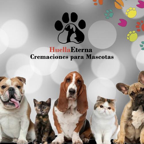 cremación de mascotas  huella eterna