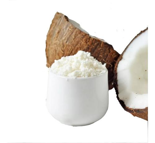 creme de leite de coco em pó 1 kg 100% puro + nota fiscal