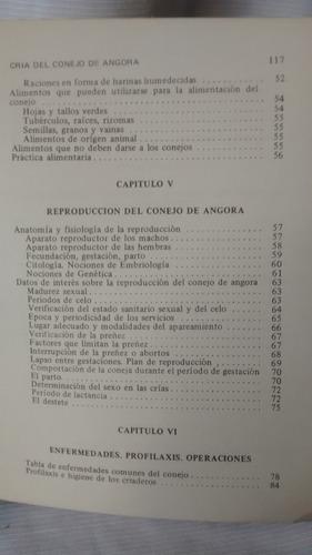 cria de conejo de angora - adolfo lerena gabarret - 1975