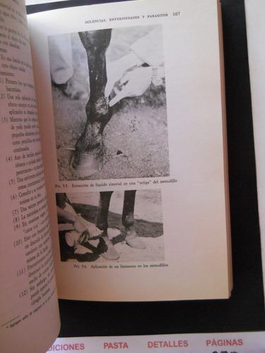 cria y manejo del caballo  ulmer & jurgensen envio gratis