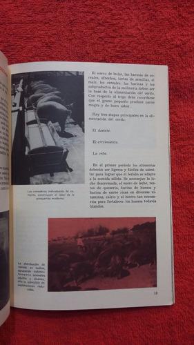 crianza del cerdo - plan de educacion de adultos 1970 - 1974