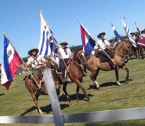 criollo 2014