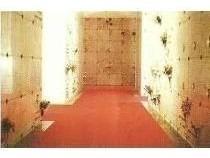 cripta