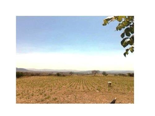 (crm-1355-687)  magnifico campo de cosecha  en  morelos h 001