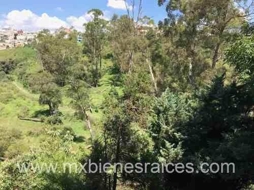 (crm-136-2602)  bosque de quiroga
