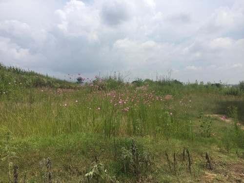 (crm-140-429)  terreno en venta en tepeyanco, tlaxcala