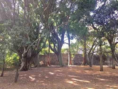 (crm-1404-2578)  se vende terreno plano dentro de rancho cortés clave tt838