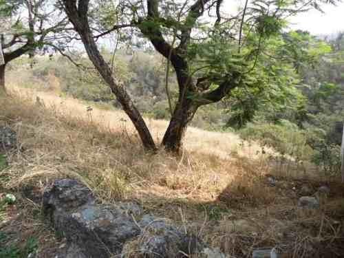 (crm-1404-89)  terreno en desnivel con hermosas vistas al bosque !
