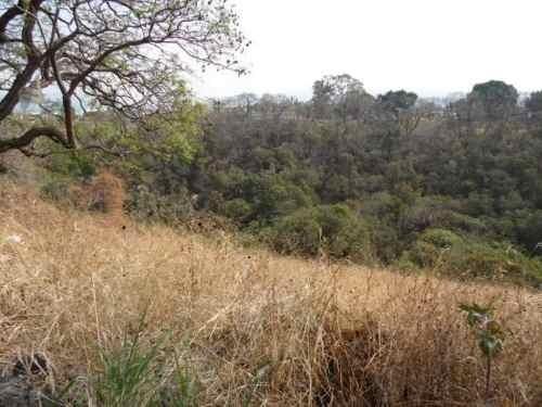 (crm-1404-90)  terreno en desnivel con hermosas vistas al bosque !