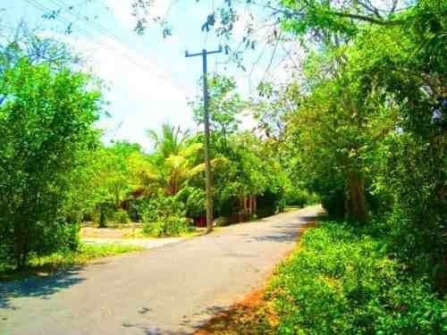 (crm-2658-1110)  terrenos en venta en ruta de los cenotes puerto morelos