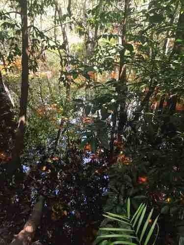 (crm-2658-315)  terrenos en venta en riviera maya