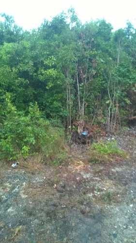 (crm-2658-3945)  terrenos en venta en bonfil cancun