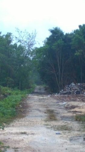 (crm-2658-4111)  terrenos en venta en bonfil cancun