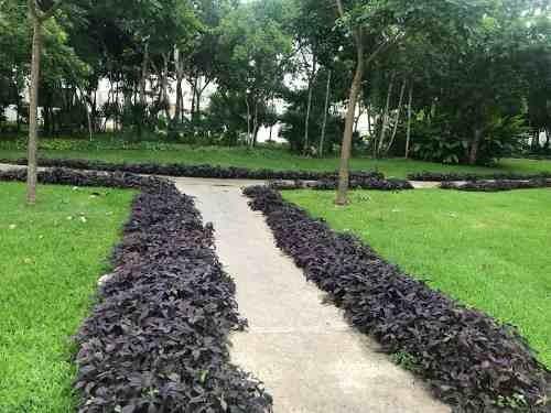 (crm-2658-4163)  terrenos en venta en aqua cancun