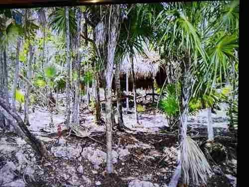 (crm-2658-4344)  terrenos en venta en mahahual mexico