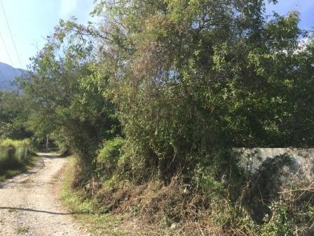 (crm-2895-265)  terreno en venta en el barrial