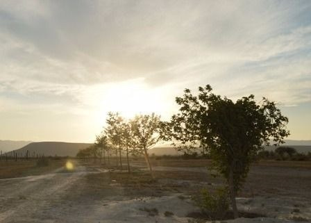 (crm-2895-734)  terreno residencial en venta en ejido las maravillas