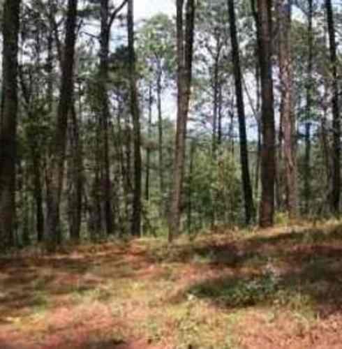 (crm-3816-2997)  skg vende terreno de 17 hectáreas en valle de bravo