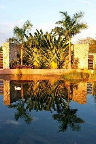(crm-4184-1647)  casona tipo hacienda yucateca, increíbles espacios naturales