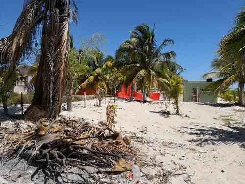 (crm-4184-1721)  terreno cercano a la marina telchac, yucatán, ¡excelente ubicación!