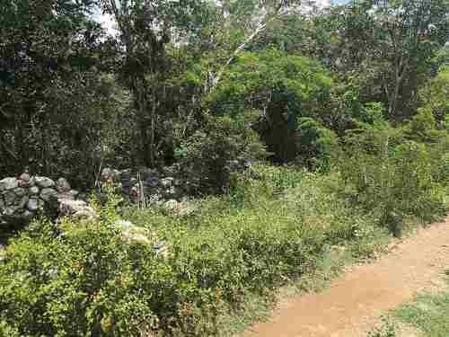 (crm-4184-2406)  en venta terreno de 9 hectáreas en mérida yucatán, cerca de periférico