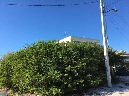 (crm-4184-2460)  terreno en venta en celestun, en esquina con arenal frente al mar.