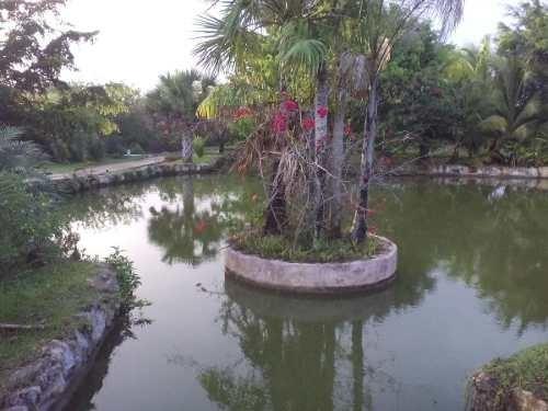 (crm-4184-2726)  casona tipo hacienda yucateca, increíbles espacios naturales