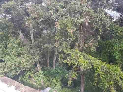 (crm-4708-1829)  excelente terreno en venta en condado de sayavedra