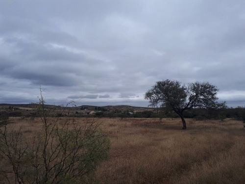 (crm-4812-658)  terrenos venta fresno desde $100 pesos mt2 borrar ecg1