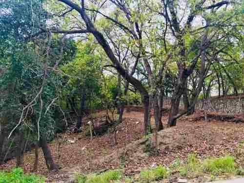 (crm-4817-27)  hermoso terreno arbolado en esquina; san francisco; santiago n.l.