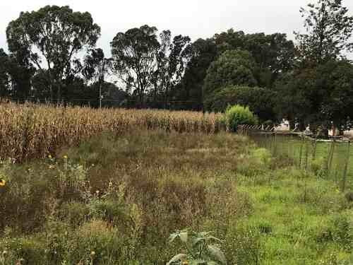 (crm-5081-191)  terreno en venta en xoxtla