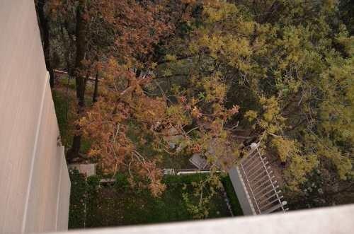 (crm-5204-99)  depto con terraza