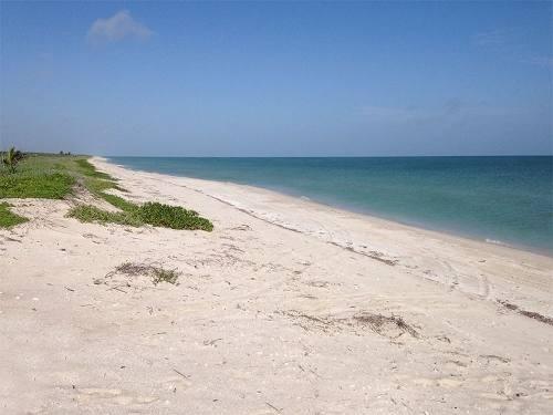 (crm-5983-10)  terreno frente al mar en sisal yucatán.