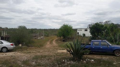 (crm-5983-22)  8 hectáreas en venta funciona como rancho en subincancab
