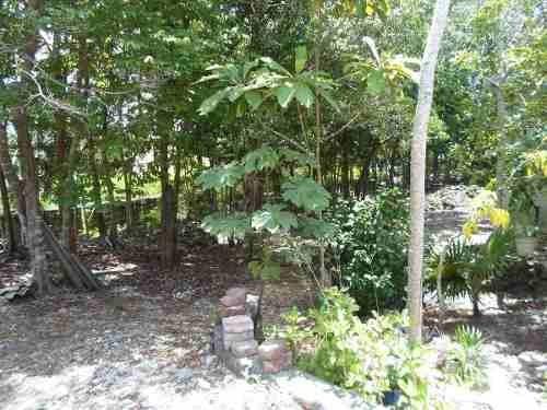 (crm-634-585)  se vende terreno en cancún col. avante de 2,500 m2