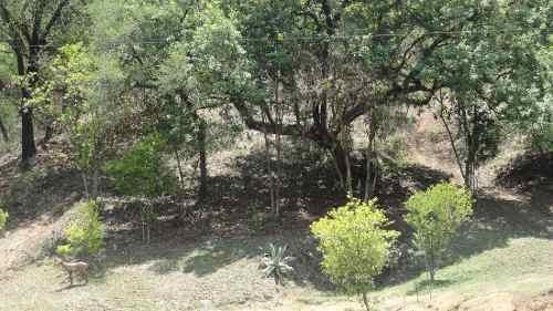 (crm-735-4658)  quinta en venta o renta  santiago nuevo leon en el alamo