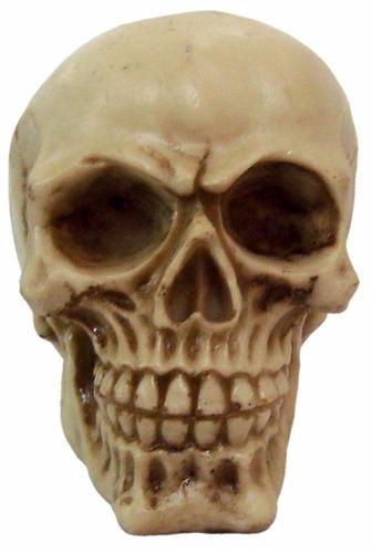 crânio caveira newton decorativo halloween promoção